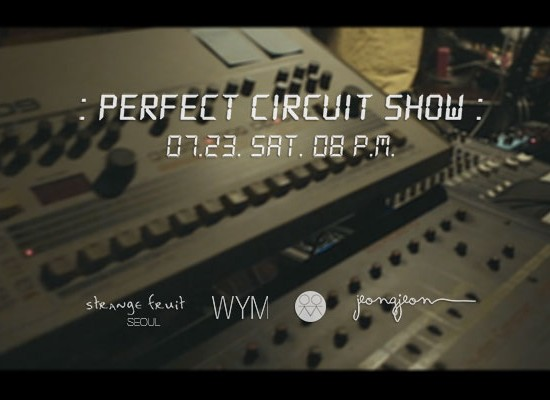 perfectcircuit_cover